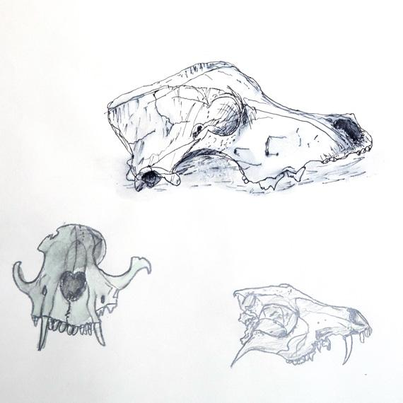 Lancing Prep Hove art gallery skull drawings