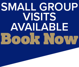 Small Group Visits Available