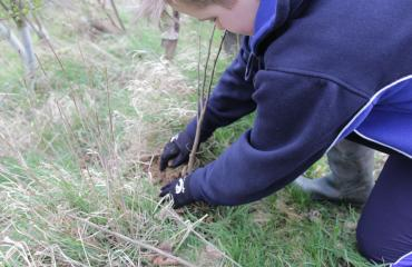 Pupils at work in the Lancing College Farm